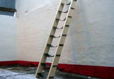 Emotional Ladder